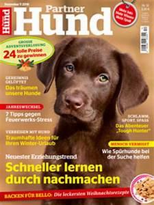 Partner Hund Abo Kündigen : haltung von streifenh rnchen ein herz f r tiere magazin ~ Lizthompson.info Haus und Dekorationen