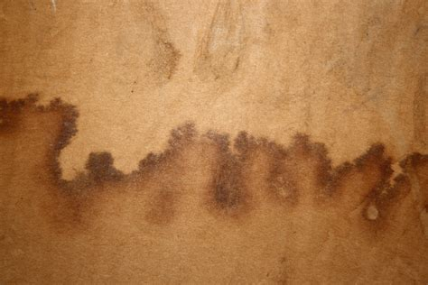 Water Stains On Cardboard Texture Picture Free
