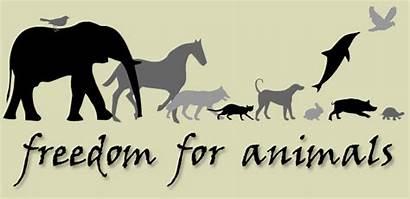 Animals Companion Animal Entertainment Freedom Say Compassionate