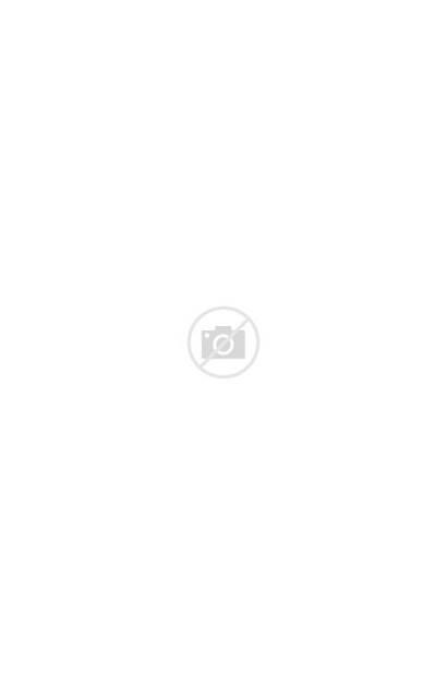 Stan Lee Camilla Errico Drawing Friday Mountain