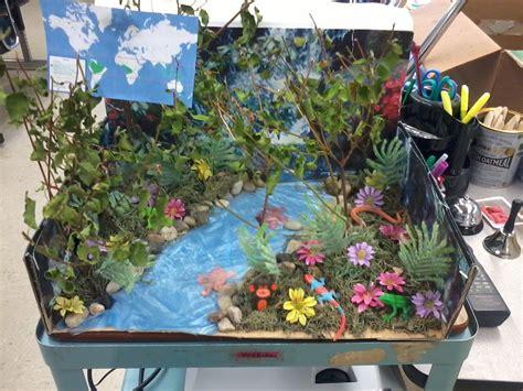 Tropical Rainforest Biome Project Maquetas escolares