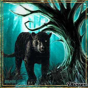 Black Panther In The Forest Picture 124873104