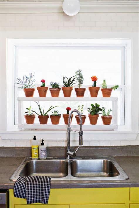 Window Ledge For Plants by Window Ledge Plant Shelf Indoor Plants