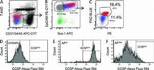 Cell Surface Phenotype And Autofluorescence