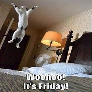 Woohoo It's Friday Pictures, Photos, and Images for ...