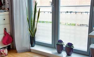 Klebefolie Fenster Sichtschutz : sichtschutz f rs fenster sichtschutz bild 2 ~ Watch28wear.com Haus und Dekorationen