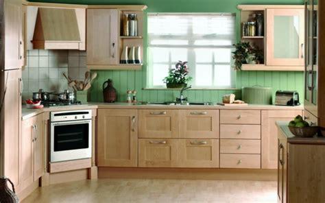 green corner kitchen passende zimmerpflanzen bestimmen und pflegen 1362