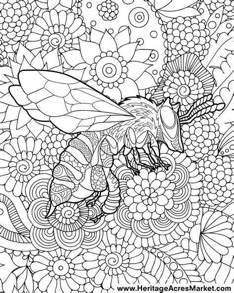 bee coloring page friendly bee coloring page bees free