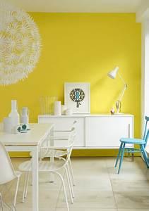 dcoration intrieure salon salle manger maison peinture With good idee couleur peinture salon 16 maison particuliare decoration moderne couloir