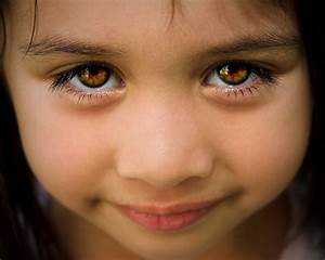 Brown Eyes and Their Matching Faces Are More Trustworthy