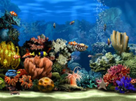 Living Marine Aquarium 2 Animated Wallpaper - 1129 animated screensavers for windows mac