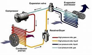 Cadillac Engine Diagram  Cadillac  Free Engine Image For
