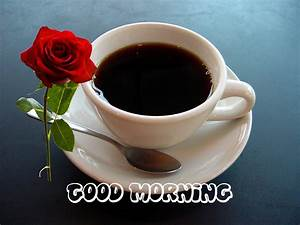 Whatsapp Good Morning Images, Photos, Pictures & SMS 2020