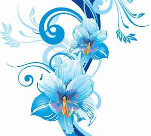 Frames & png: flower vectors various (16)