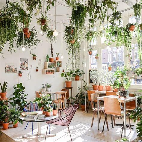 Best 25  Garden bedroom ideas on Pinterest   Ivy wall, Plants indoor and Indoor plant decor