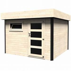 Abri De Bois : abri de jardin bois toit plat 10 30 m ep 28 mm evan l3 ~ Melissatoandfro.com Idées de Décoration