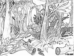 Forest Drawing by JIMENOPOLIX on DeviantArt  Jungle Drawing With Animals