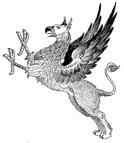 Griffin Griffon Lion Creature Psf Wikipedia Animal
