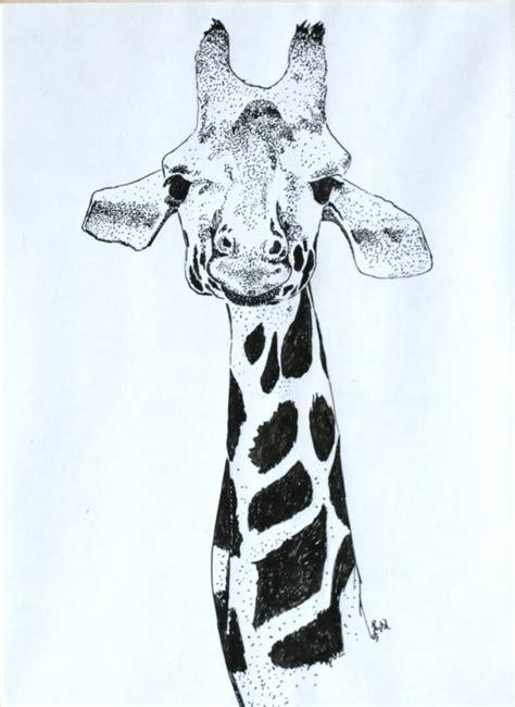 animal portraits    ruths artwork