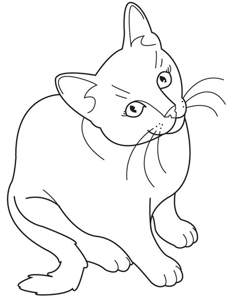 cute kitty cat coloring pages collections gianfredanet