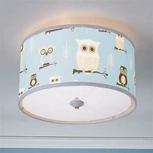 Ceiling light shades for nursery integralbook