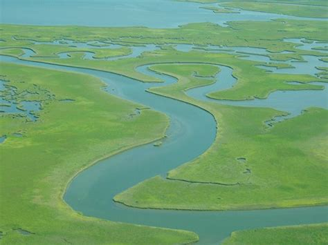 Biophysical economics: The Mississippi Delta as a lens for ...