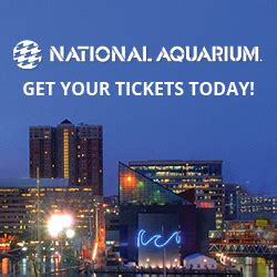 aquarium in baltimore discount tickets it up grill
