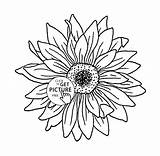 Sunflower Pages Coloring Colouring Flower Printables Outline Drawing Books Sunflowers Getdrawings Again Bar Looking Case Don Adult Discover sketch template