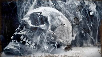 Skull Wallpapers 1080 Px 1920