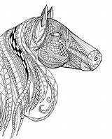 Coloring Horse Pages Adults Head Adult Zentangle Printable Paint Detailed Intricate Horses Advanced Books Sheets Etsy Animal Bestcoloringpagesforkids Template Printables sketch template