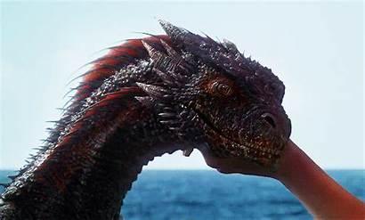 Dragon Dragons Gifs Animated Got Thrones Drogon