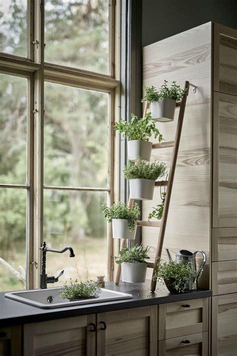 cuisine avec poteau au milieu les 25 meilleures idées de la catégorie décor de plantes d