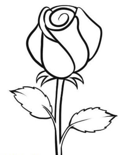 contoh sketsa lukisan bunga tulip