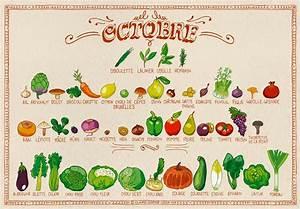 Calendrier Saison Fruits Et Légumes : calendrier de saison octobre pissenlit ~ Dode.kayakingforconservation.com Idées de Décoration