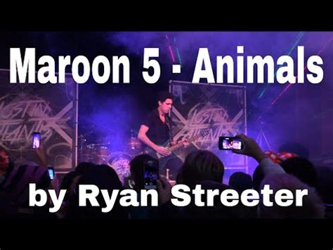 maroon  animals cover   youtube