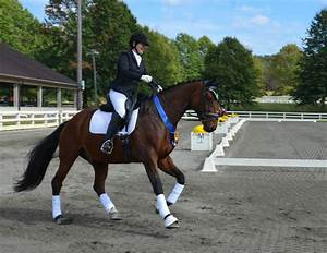 ESDCTA crowns its dressage champions at the Horse Park of ...