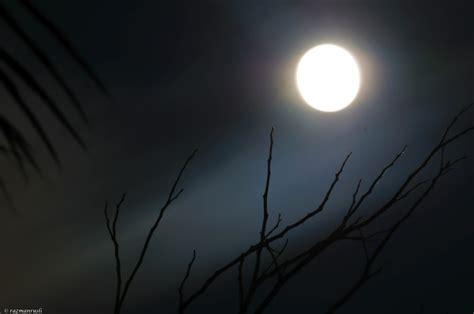Janin 9 Bulan Bulan Related Keywords Bulan Long Tail Keywords Keywordsking
