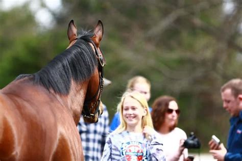 Visit Horse Country Experience The Best Of Horse Country