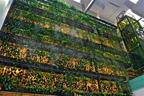 water features for the garden greenroofs com projects singapore changi airport