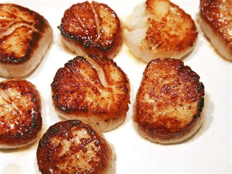 what are scallops 1000 ideas about pan seared scallops on pinterest scallops scallop recipes and seafood pasta