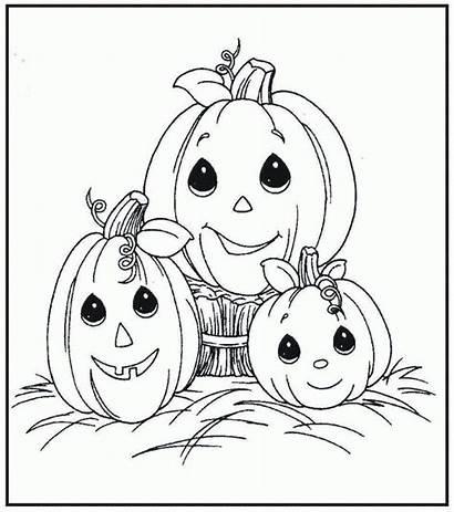 Coloring Pumpkin Patch Clipart Clip Popular Precious