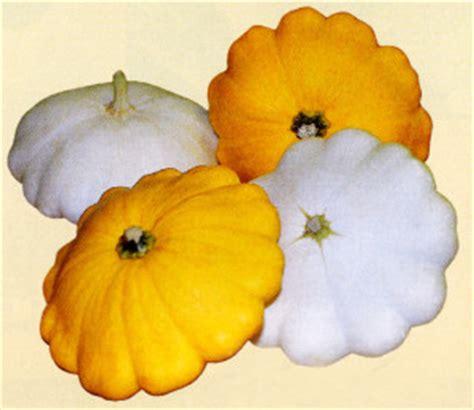 legumes de la famille des potirons que faire avec les courges grosses l 233 gumes