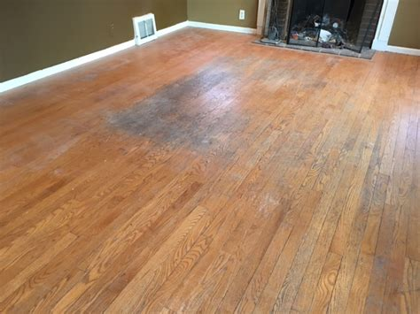 urine on hardwood floors getting rid of urine smells in hardwood floors arne s