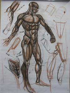 3kicks Art Studio  Full Body Anatomy Demo