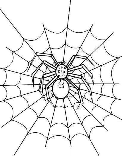 Spider Coloring Web Pages Drawing Printable Halloween