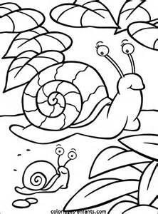 HD wallpapers coloriage magique a imprimer papillon