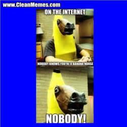 Funny Horse Memes Clean