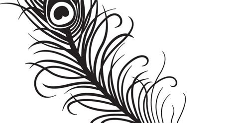 peacock feather clipart black  white clipart panda