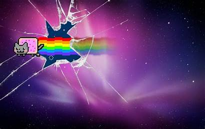 Broken Glass Nyan Cat Furry Backgrounds Wallpapers