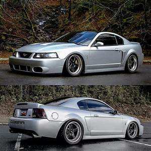 2003/04 Ford Mustang SVT Cobra with Black RTS Weld Racing Wheels   Mustang wheels, Ford mustang ...